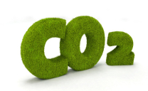 SA's transition to a low carbon economy