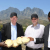 Vergelegen wine estates removes alien vegetation