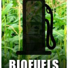 Biofuels in South Africa – where do we stand