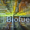 Europe should lead on advanced biofuels to achieve low carbon mobility