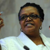 SA Minister to participate in UN Environmental Assembly
