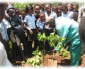 Official Launch of Make Africa Green