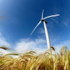 New global coalitions for green tech solutions