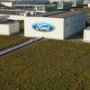 Ford's green roof: a decade of innovation