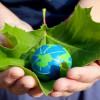 Green Building Professionals in Top Demand: USGBC