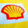 ANC ups stake in Shell