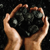 Eskom backs coal, nuclear to meet SA's needs