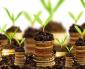 Toward a green deal