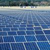 Urban Solar Farms