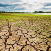 Expectations high in build up to COP21