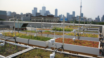 Green Roof Innovation Testing lab set up