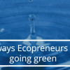 10 ways Ecopreneurs are going green