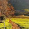 Cape winery Douglas Green Bellingham achieve sustainability objective