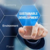 Sustainability reporting: Why SA companies must up their game