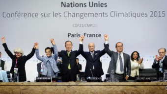 What does the green economy think of the Paris Agreement 100 days on