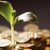 Allocating capital to renewable energy