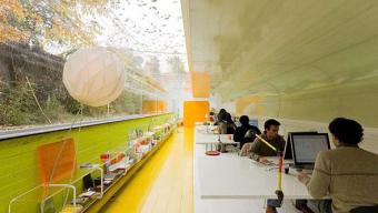 Green Interiors Improve Productivity